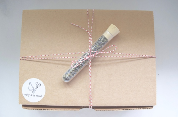 Science-themed craft subscription box
