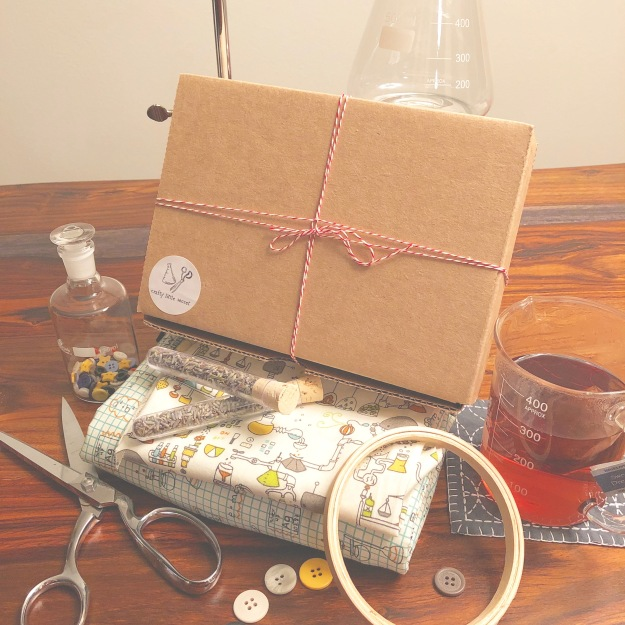 Science-themed craft subscription boxes
